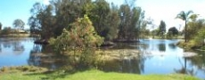 Dawkins Park and ponds in Macksville  © 1999 Photo by Nambucca Graphics