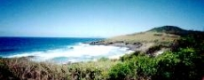 Pacific Ocean from Scotts Head village © 1999 Photo by Nambucca Graphics