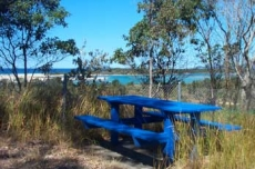 McClung Reserve in Bay Street Nambucca Heads
